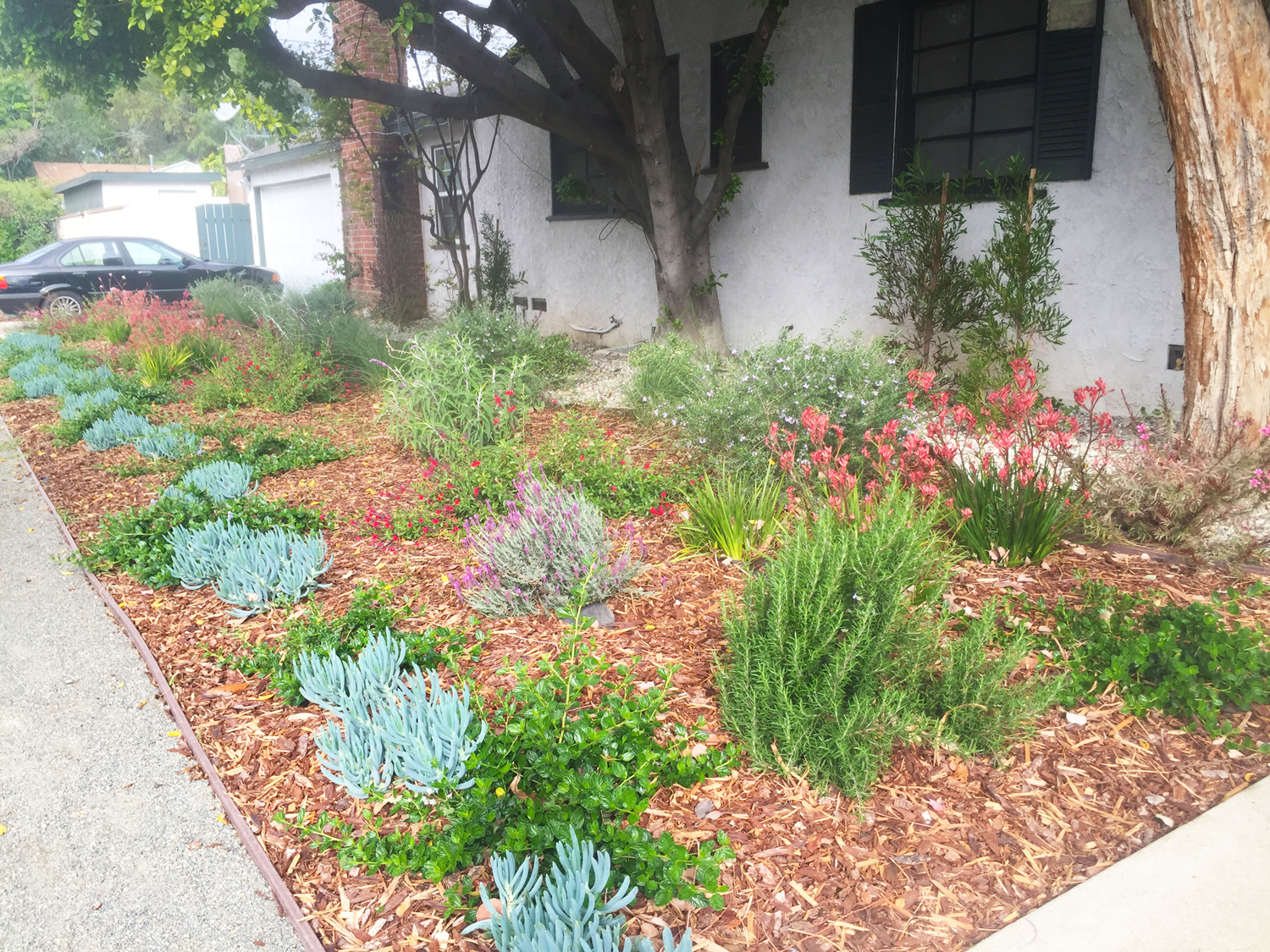 los angeles landscaping service