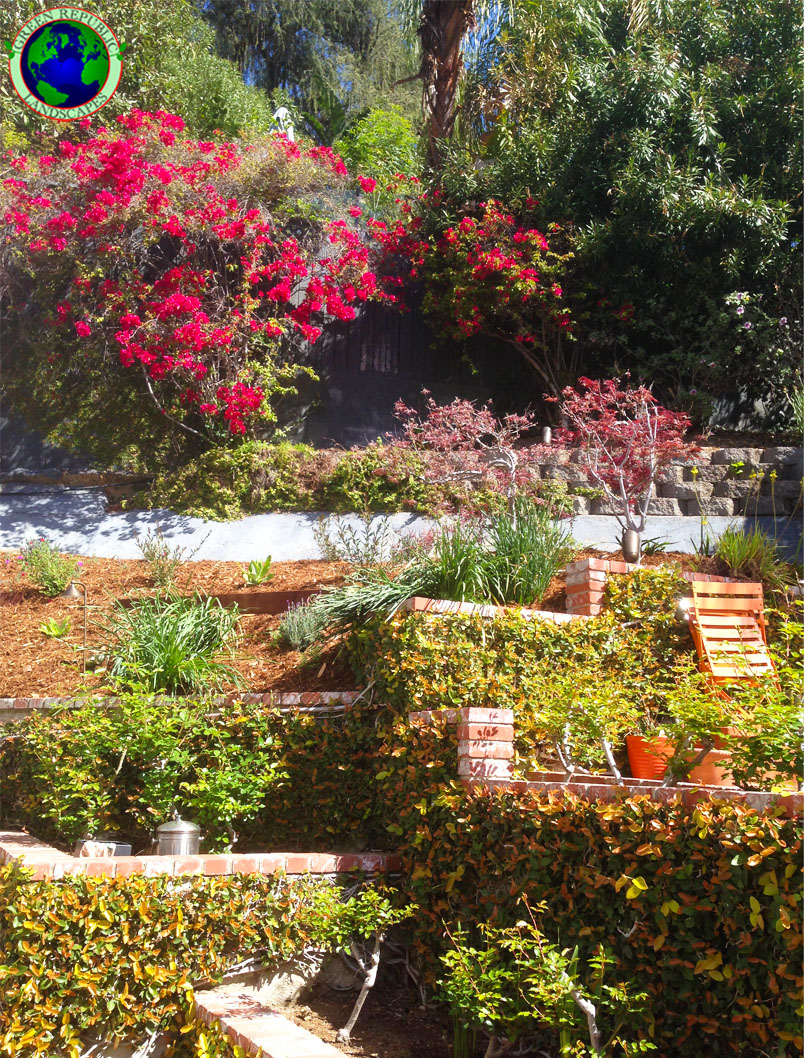 los angeles landscapers